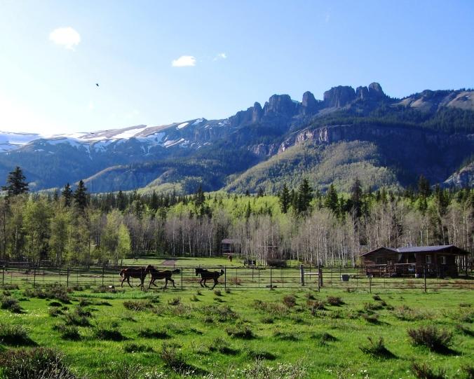 kicking up their heels at lost trail ranch