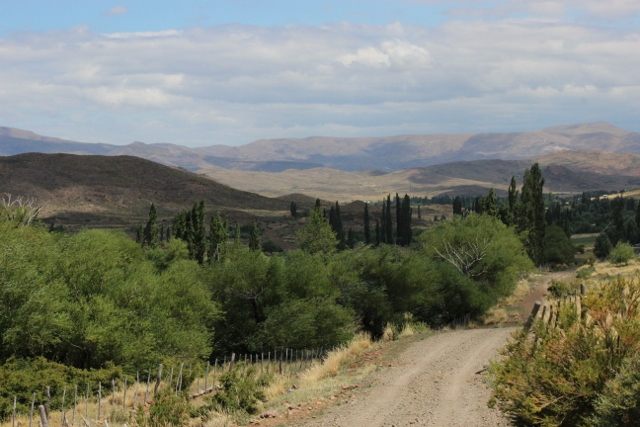 just up the road from the chacra (640x427)
