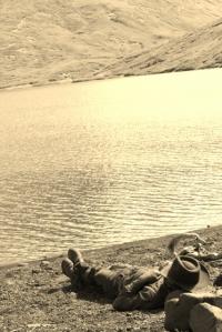 bob at lagoona
