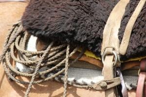 danny's saddle (640x427)