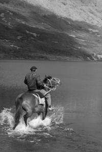 eduardo and horse (427x640)