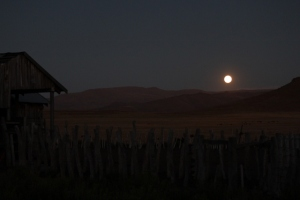 full moon at buta (640x427)