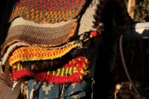 saddle blankets (640x427)