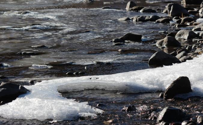 november rio grande