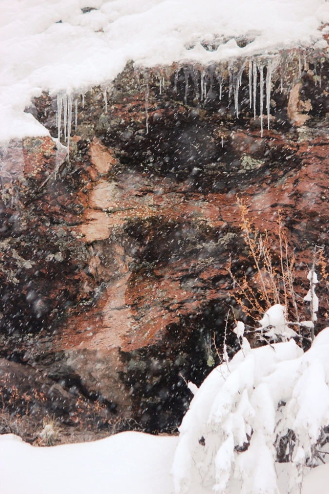 snow ice rock branches