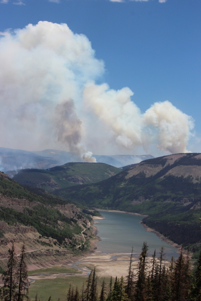 un named plumes of papoose fire