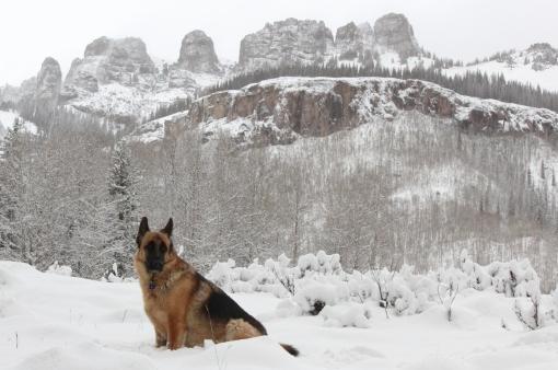 gunnar before snowy pole mountain