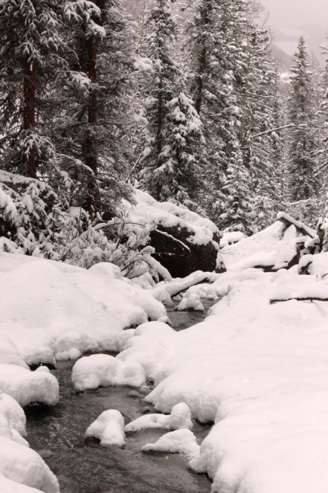 spring creek in snow