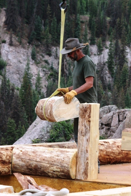 bob placing log