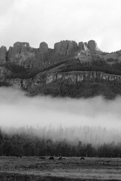 morning fog on pole mountain