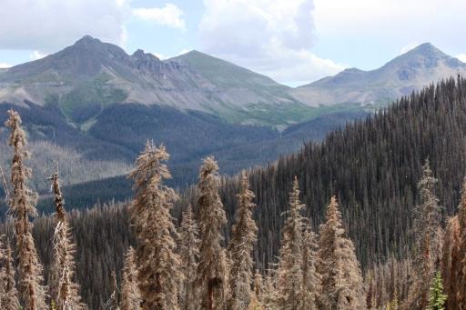 on ute ridge looking southwest